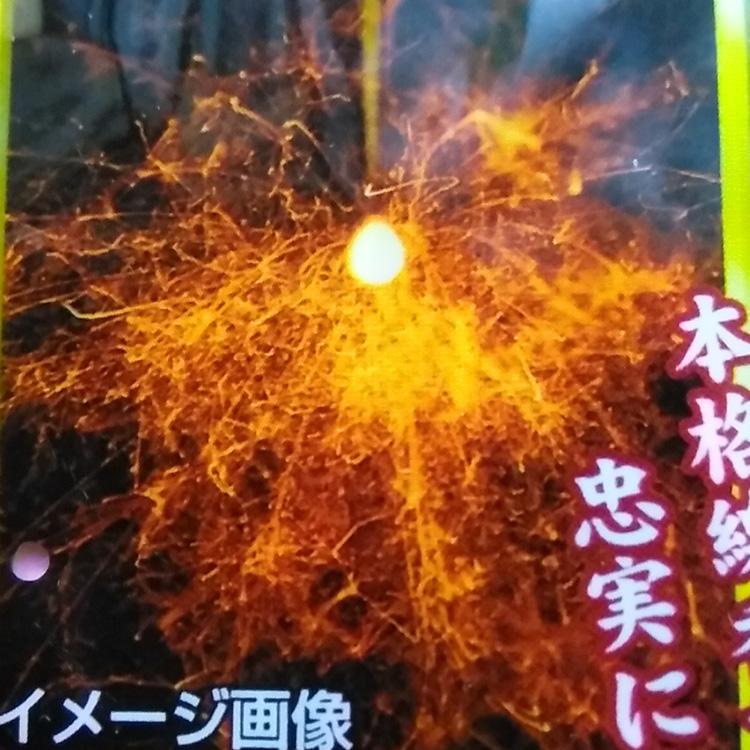 線香花火2セット