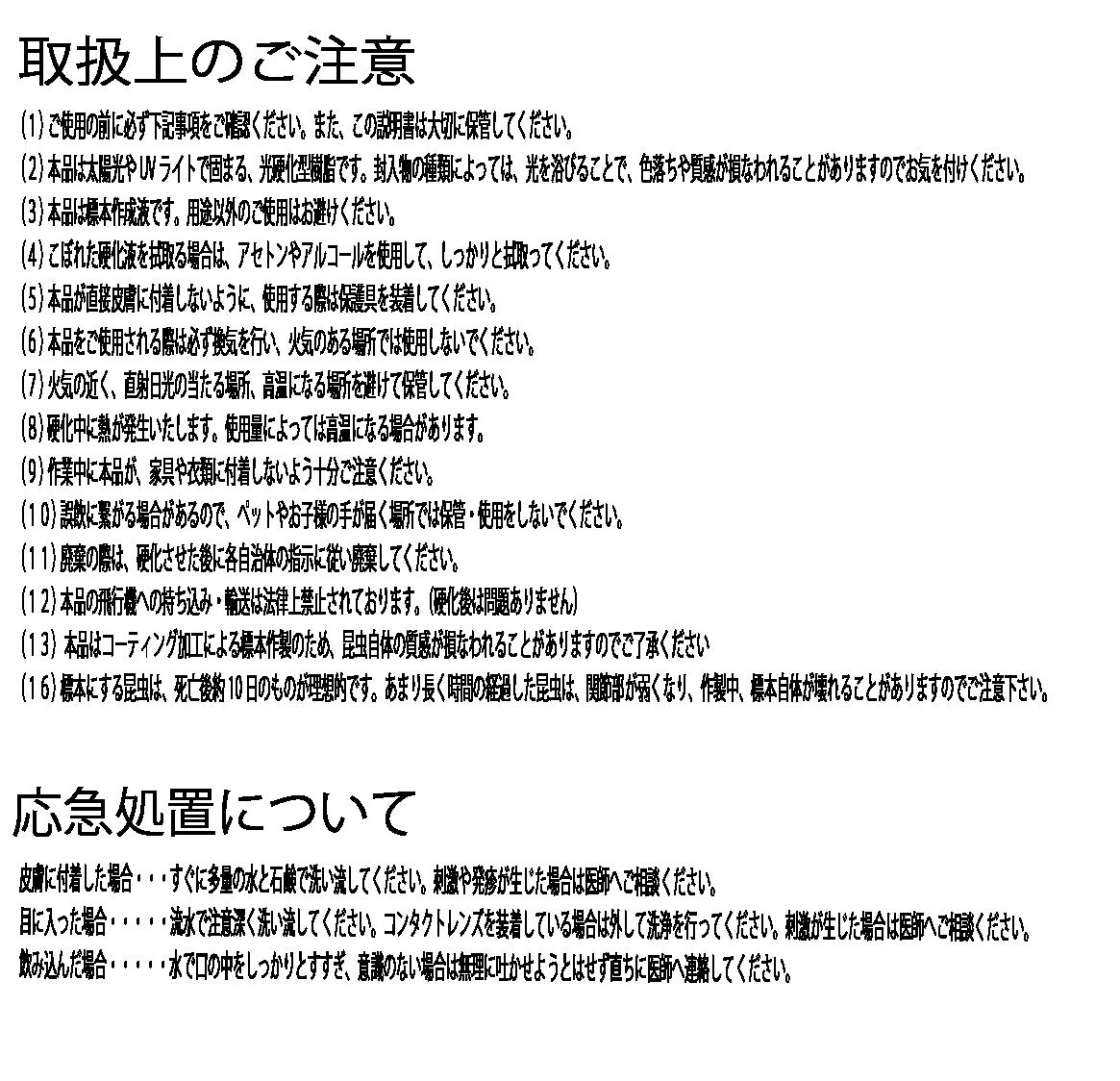 【かんたん昆虫標本】昆虫ロック