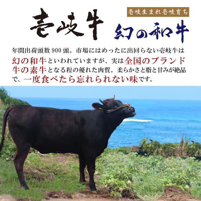 壱岐牛ビーフカレー 4本セット