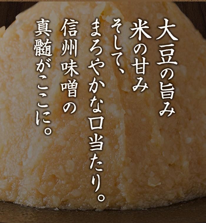 おいしい味噌(信州味噌) 750g 1カップ