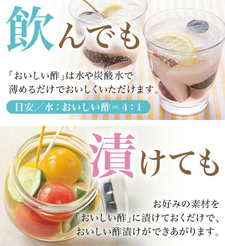 おいしい酢900ml 12本 小袋入 【新レシピBOOK「おいしい酢の黄金比レシピ」をプレゼント!】