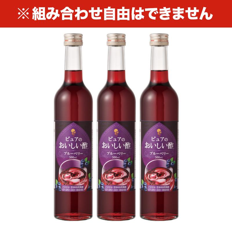 おいしい酢 フルーツビネガー 《ブルーベリー》 500ml 3本