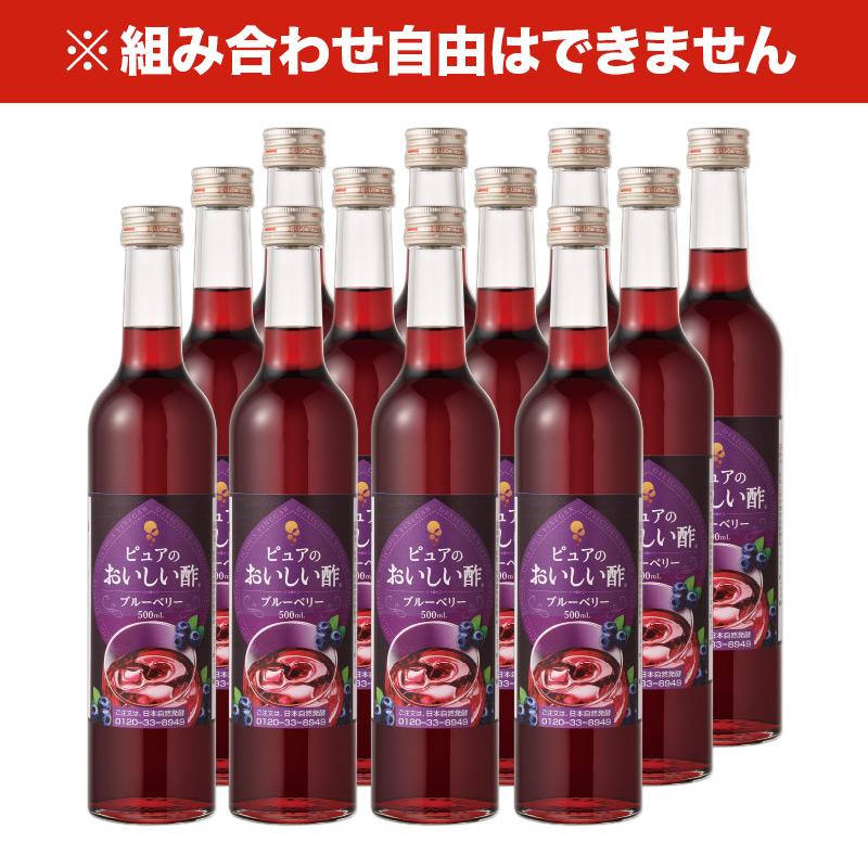 おいしい酢 フルーツビネガー 《ブルーベリー》 500ml 12本