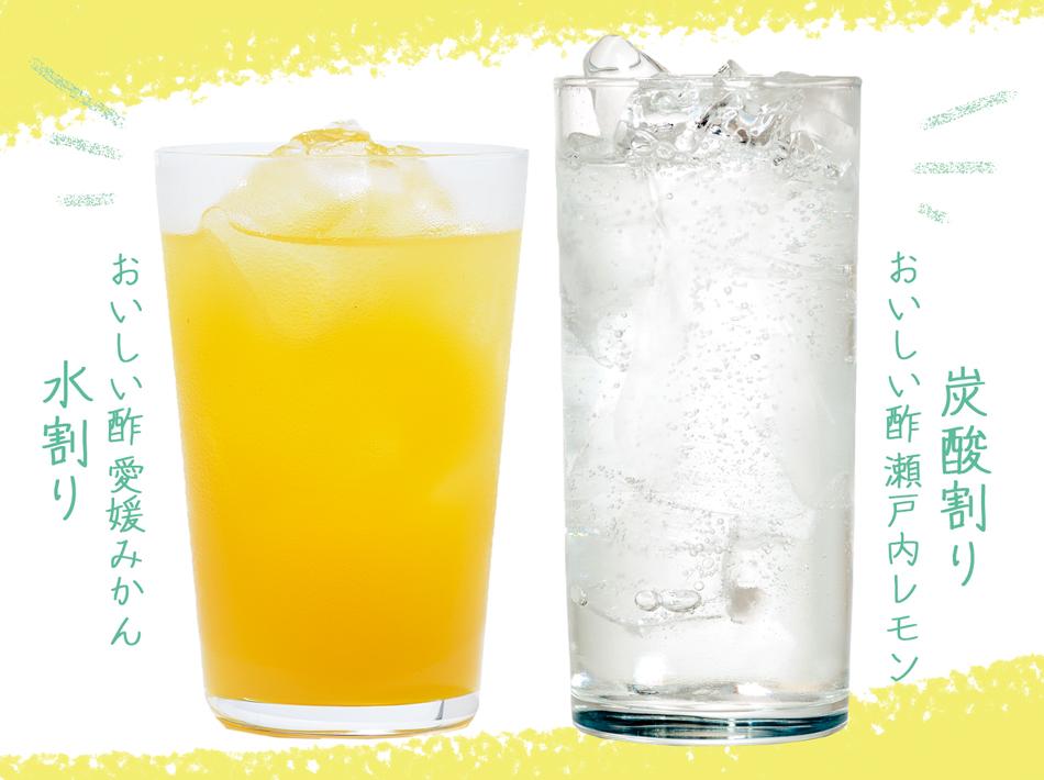 送料無料!「おいしい酢ドレッシングBセット 2021年夏」レシピBOOK&ドレッシングレシピ付き【ギフトに最適】