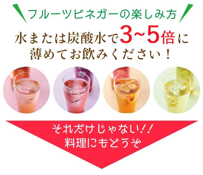 おいしい酢 《フルーツビネガー 3種》 6本セット(ザクロ2本・ブルーベリー2本・アセロラ2本)
