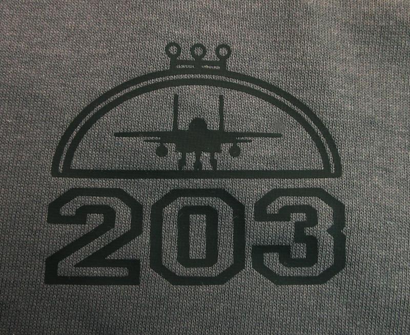 203飛行隊 シークレットイーグルス(送料込)