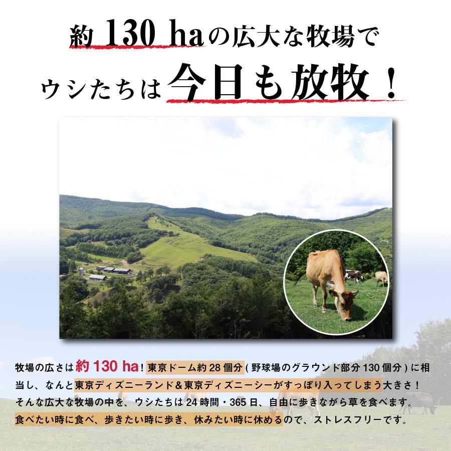 [なかほら牧場]ドリンクヨーグルト プレーン 500ml【冷蔵】