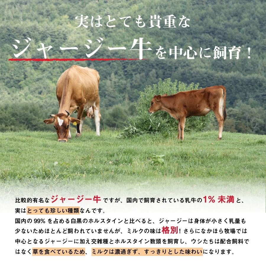 [なかほら牧場]ドリンクヨーグルト加糖(アガベシロップ)500ml【冷蔵】