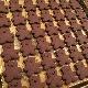 [レストランコア特製]全粒粉とココアのくまさんクッキー 8枚(卵・乳製品不使用)