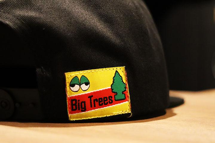 OSSANTHEHOOD snapback cap (bigtree) / black