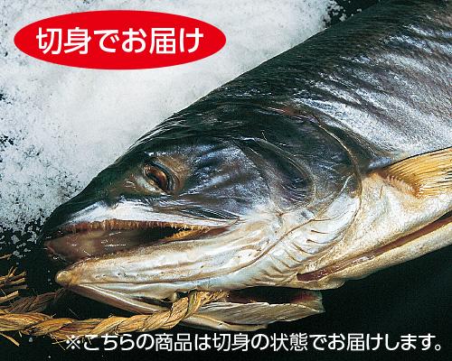 日本海仕込み特選塩引鮭2kg【切身・トレー】