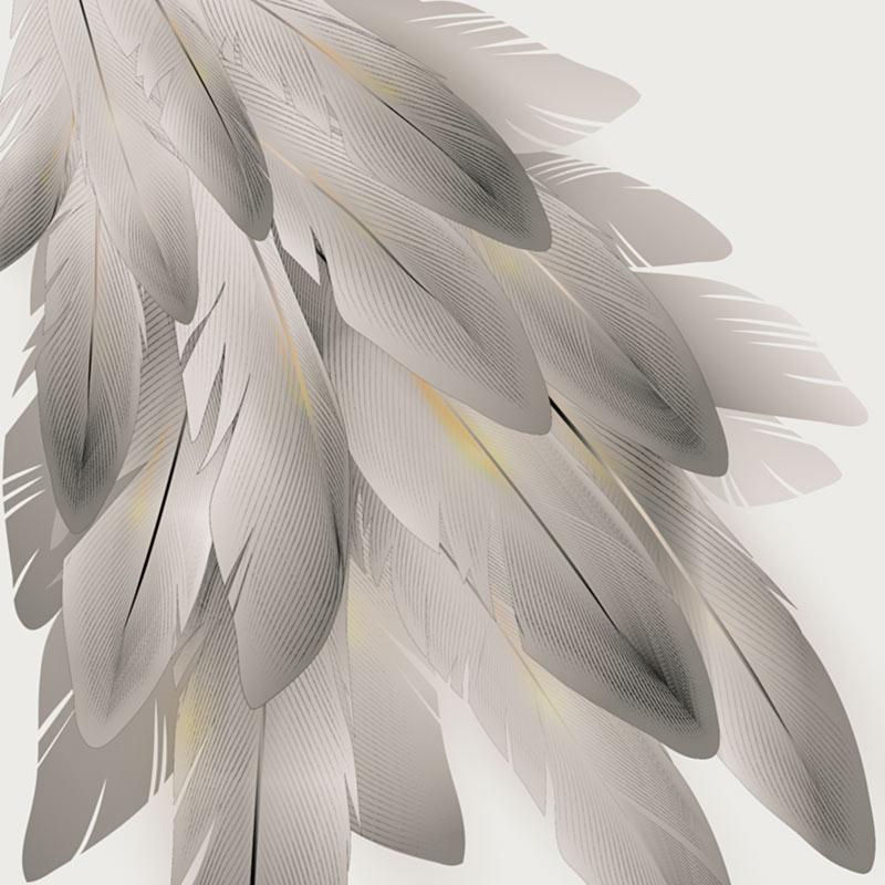 『やさしい羽』(アムンゼン70cm)