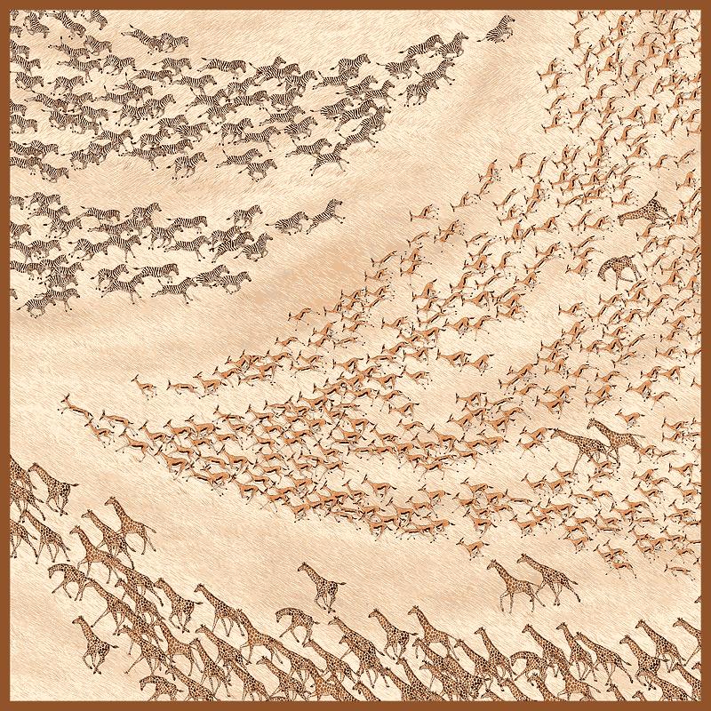 『サファリ』(アムンゼン70cm)