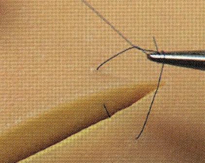 [送料無料] 縫合練習キット(耐久性抜群!) 19_9001