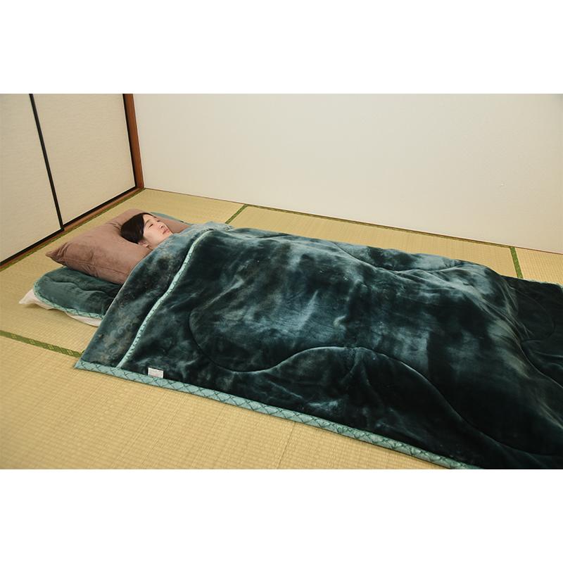 TEIJIN あったか毛布 (シングル)(レッドのみ)