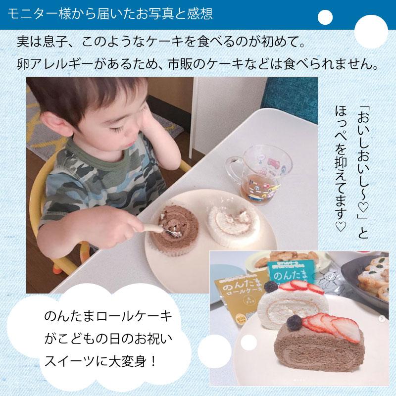【宅配便受取】Egg Free [卵不使用] のんたまロールチョコクリーム10個セット