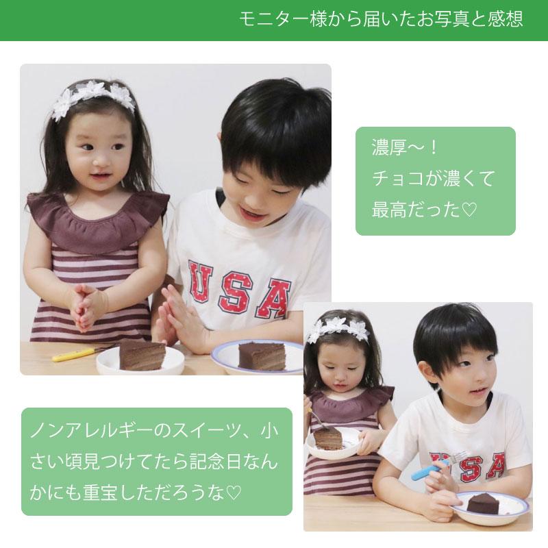 12/1-14受取【宅配便受取】Egg Free [卵不使用] 魅惑のザッハトルテ