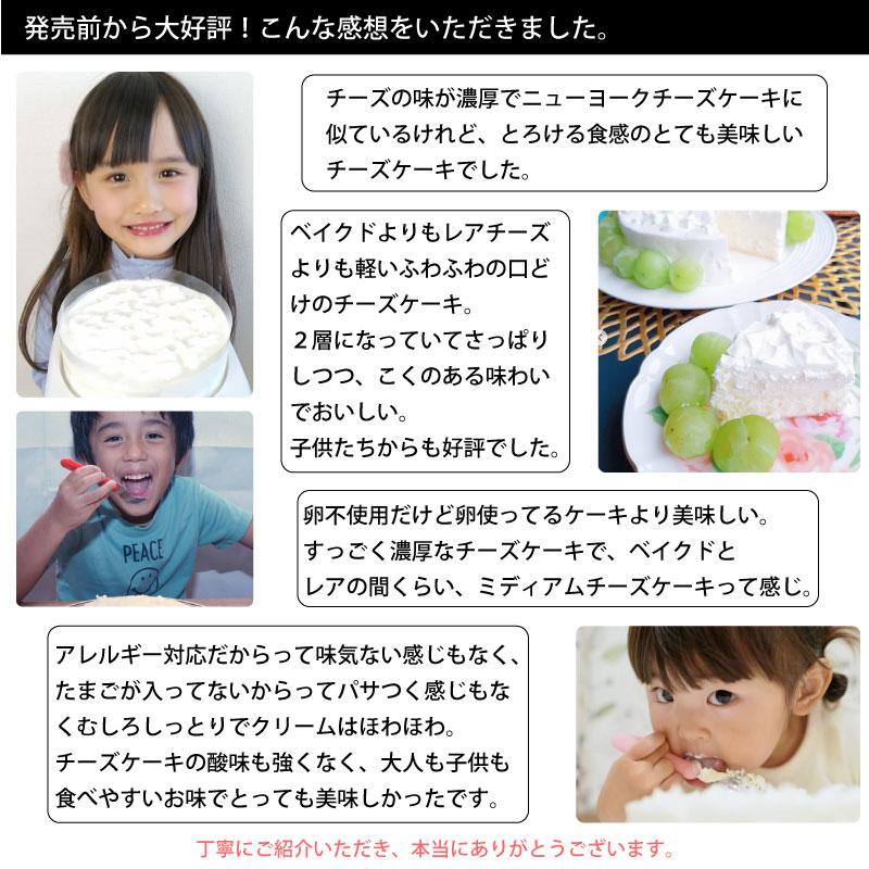 12/15-26受取【宅配便受取】ミディアムチーズケーキ「watage」卵アレルギー対応チーズケーキ