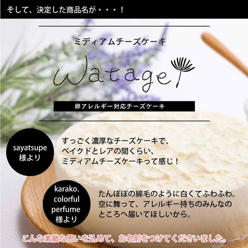 【店舗受取】ミディアムチーズケーキ「watage」卵アレルギー対応チーズケーキ