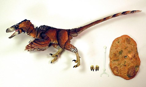 Beasts of Mesozoic [06] アダサウルス Adasaurus monogoliensis