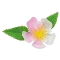 造花 ミニ桜 DK-51 1000入【取り寄せ商品・即納不可】