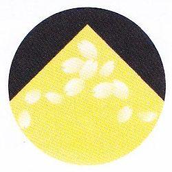 紙鍋 SKA-142 花なべ角(やまぶき) 250枚入