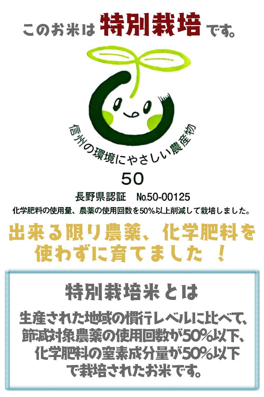 新米 令和2年産 特別栽培米コシヒカリ 玄米5kg ブナの水 特A 長野県北信産
