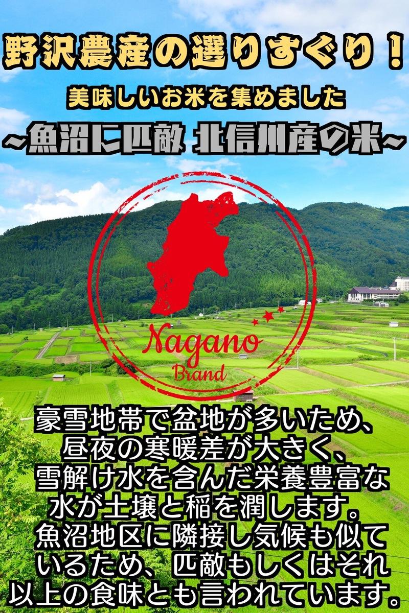 【新米】令和3年産 特別栽培米コシヒカリ 玄米5kg ブナの水 特A 長野県北信産