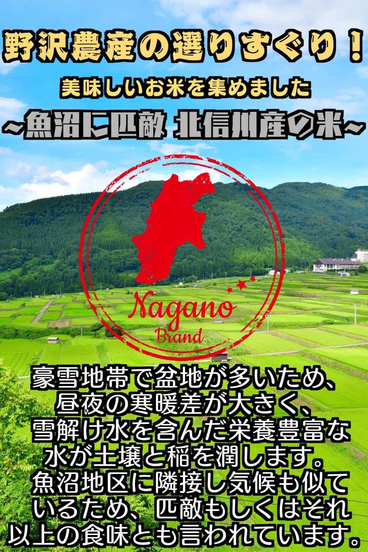 【公式WEB価格】令和2年産 無洗米5kg 特A産地 北信産コシヒカリ