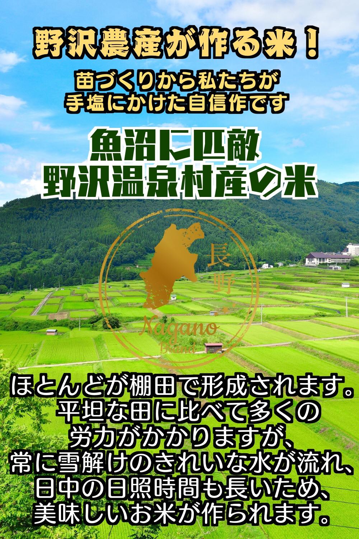 切り餅 スリット入り 野沢の餅 野沢温泉村産 特別栽培もちひかり使用 500g (3袋セット)