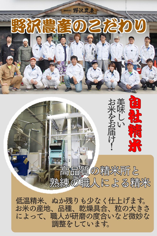 【公式WEB価格】令和2年産 新潟県産コシヒカリ 白米5kg