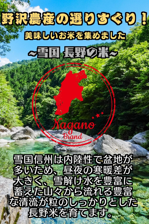 【新米】令和3年産 長野県産コシヒカリ 【玄米】5kg