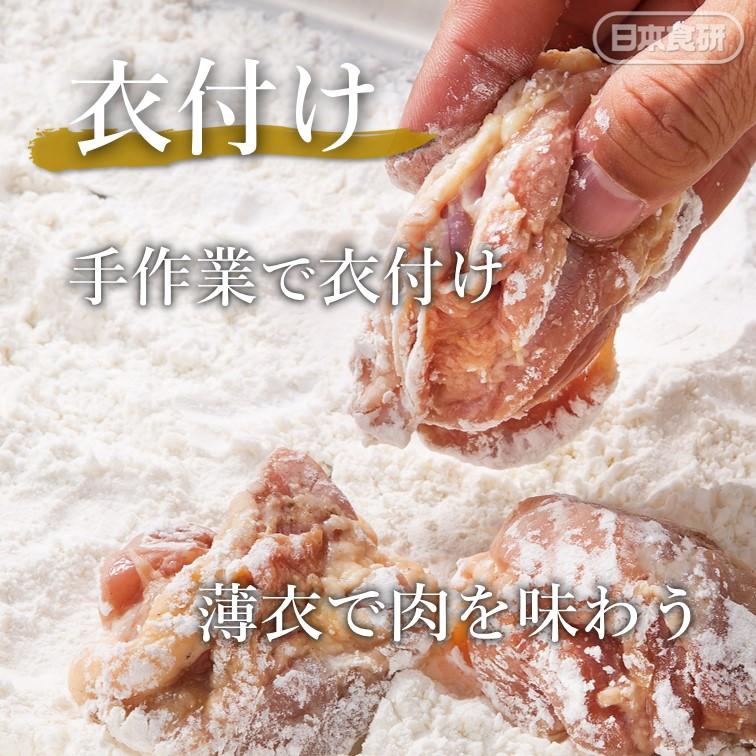 食研から揚げ 1kg 冷凍(6袋セット)