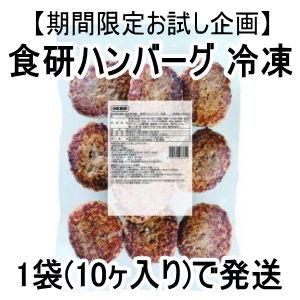 【期間限定お試し企画】食研ハンバーグ 冷凍 1袋(10ヶ入り)【送料無料】