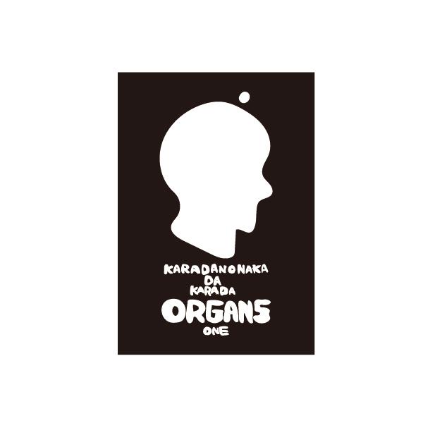 C&K:「KARADANONAKADAKARADA」初回限定盤 Tシャツセット