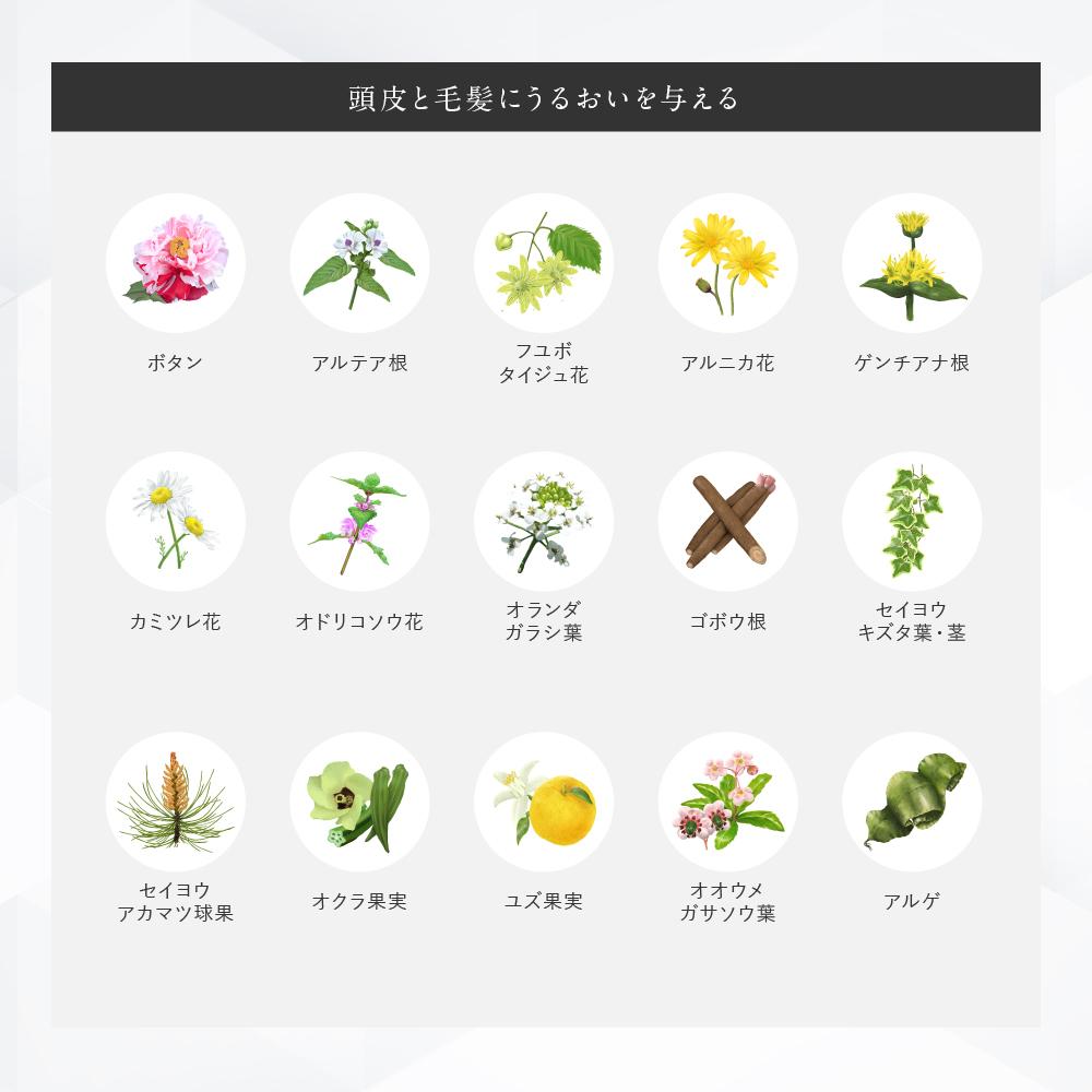 【定期商品】白髪隠しカラーリングブラシ(ブラック)■
