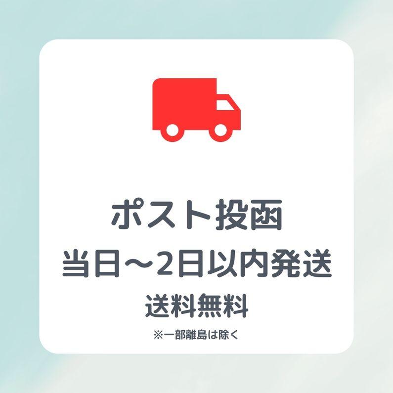 薄塩 カシューナッツ 250g /〈定番ナッツ〉/遠赤外線ロースト