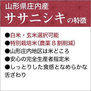 令和元年 (2019年) 山形県庄内産 ササニシキ 10kg(2kg×5袋)【白米】【特別栽培米】【送料無料】