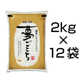 令和2年(2020年) 石川県産 夢ごこち 24kg(2kg×12袋) 白米【送料無料・即日出荷】【米袋は真空包装】