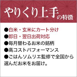 【7月のやりくり上手】北海道産 ななつぼし(10kg|5kg×2袋)【送料無料・令和元年産】【白米】【即日出荷】