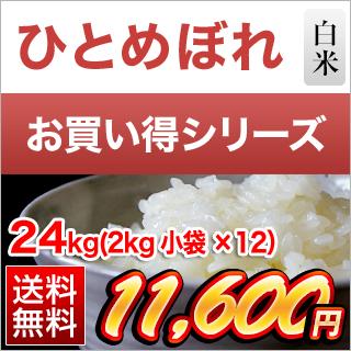令和2年(2020年) 福島県中通り産 ひとめぼれ 24kg(2kg×12袋)白米【送料無料】【米袋は真空包装】