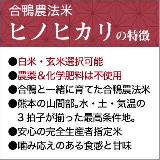 令和2年(2020年) 合鴨農法米 ヒノヒカリ 10kg(2kg×5袋)【送料無料】【白米・玄米 選択】 農薬及び化学肥料は一切不使用