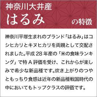 令和元年産(2019年) 神奈川大井産 はるみ 300g(2合) × 3パック 真空パック【白米・ゆうパケット便送料込】