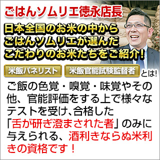 令和2年(2020年) 熊本県産 森のくまさん 白米 24kg(2kg×12袋)【送料無料】【特A評価】【米袋は真空包装】