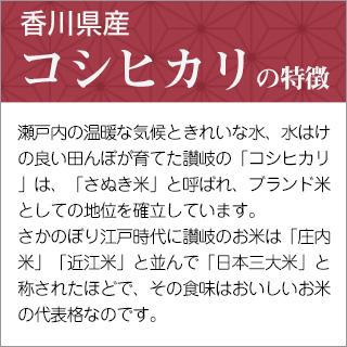 令和元年産(2019年) 香川県産 コシヒカリ 300g(2合) × 3パック 真空パック【白米・ゆうパケット便送料込】