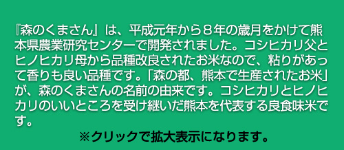令和元年(2019年)熊本産 森のくまさん 300g(2合) × 3パック 真空パック【特A評価】【白米・ゆうパケット便送料込】