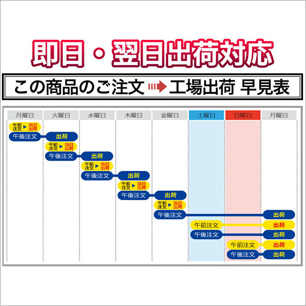 令和2年(2020年)新米 新潟県産 コシヒカリ 10kg (2kg×5袋)【白米】【送料無料】【米袋は真空包装】