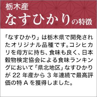令和元年(2019年) 栃木産 なすひかり〈2年連続特A評価〉 300g(2合) × 3パック 真空パック【白米・ゆうパケット便送料込】