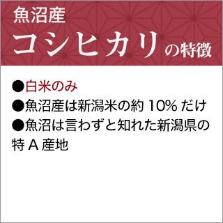 令和2年(2020年) 新潟県魚沼産 コシヒカリ〈特A評価〉2kg【白米】【米袋は真空包装】