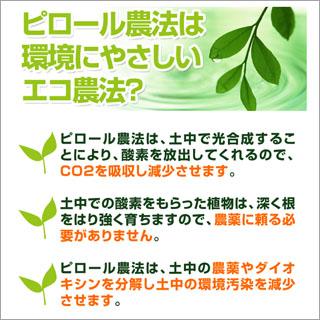 令和2年(2020年) 新米 ピロール農法米 2kg(未検査米)【白米】
